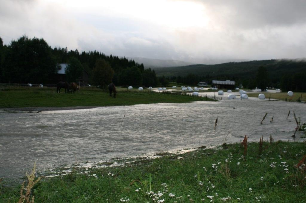 Oversvømt jorde