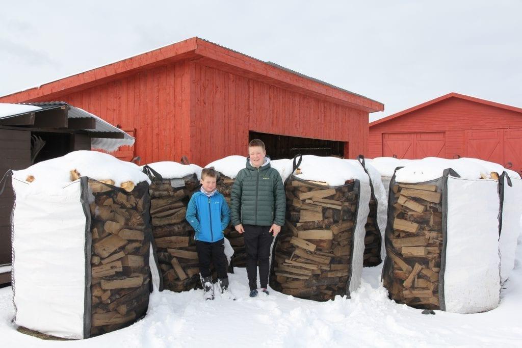 Martin og Erik Kulseth er to driftige gutter som har brukt mye av den ekstra fritiden i disse dager på vedproduksjon til familien.