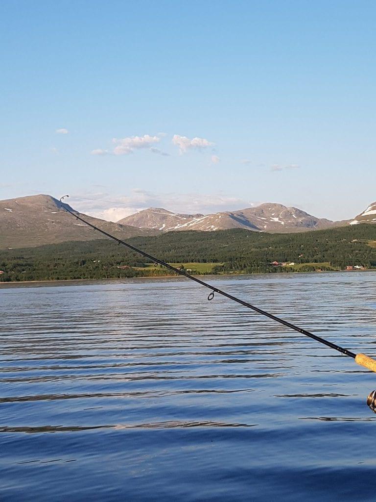 - Det er vakkert oppi her rett og slett, jeg kan ikke si annet. Når man er på Stugusjøen ser man Sylan og andre fjell. Det er rett og slett magisk, sier Jo Steffen Kirkvoll.