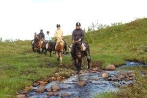 Hesteridning i tydalsfjella.