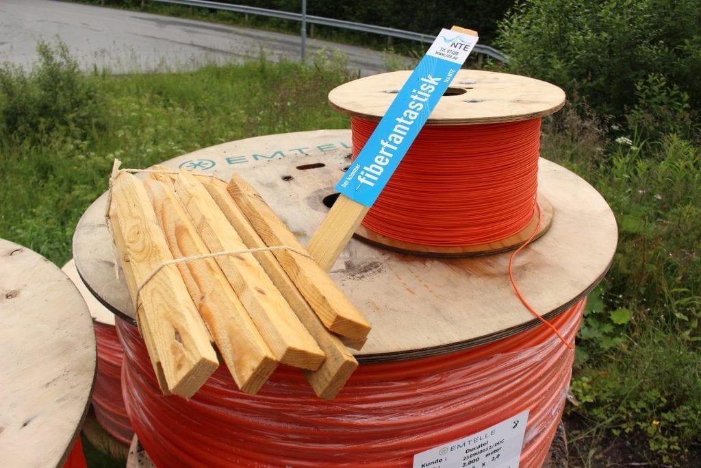 Minst 201 husstander i Vikvarvet må kjøpe fiber for at det skal bli fibernett i grenda. Nå mangler det bare ca 30 husstander. Foto: NTE