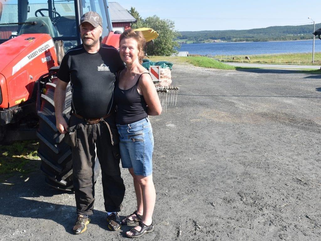 Med Stugusjøen som vakker bakgrunn driver Aud Klokkervold og Inge Morten Rotvold med ammekyr på Stugudalen. Det trives de med.