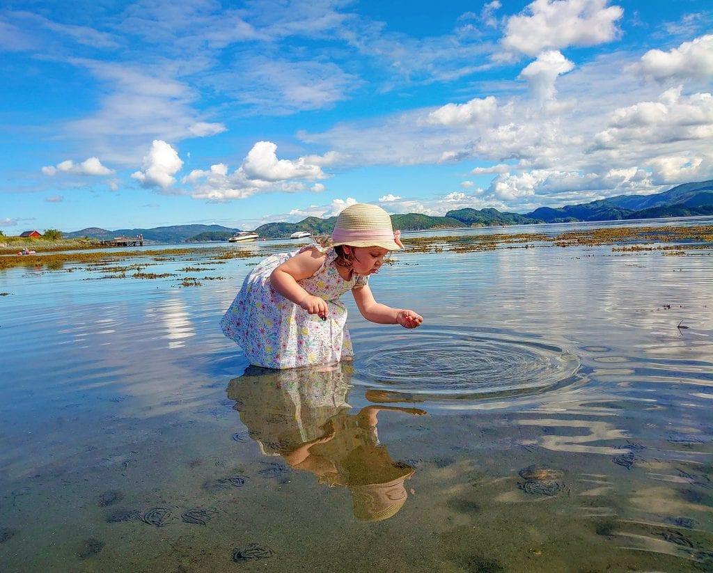 Dette bildet av selbyggen Lotte som plukker skjell i fjæra ble stemt frem som årets sommerbilde i en konkurranse avholdt av NRK Trøndelag. Foto: mamma Line Garberg