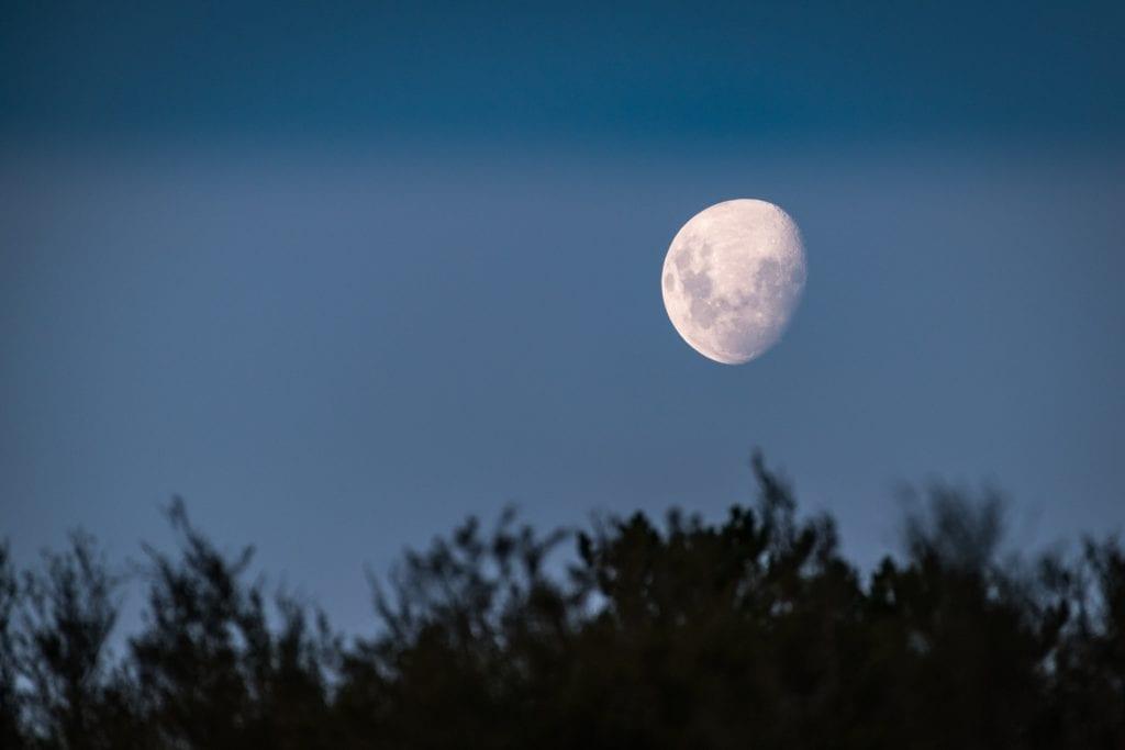 Månen har innvirkning på flo og fjære, men også når man bør plante og når man bør sanke. Foto: Pixabay